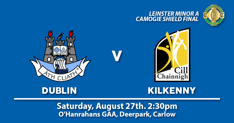 MINOR A CAMOGIE PANEL DO BATTLE WITH KILKENNY – LEINSTER SHIELD FINAL