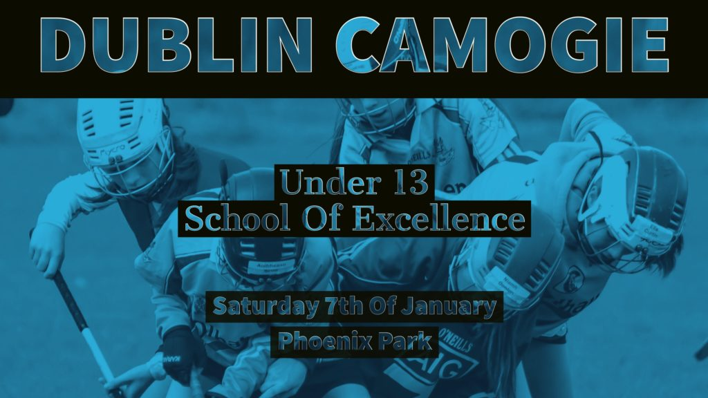 DUBLIN CAMOGIE UNDER 13 SCHOOL OF EXCELLENCE STARTS THIS SATURDAY