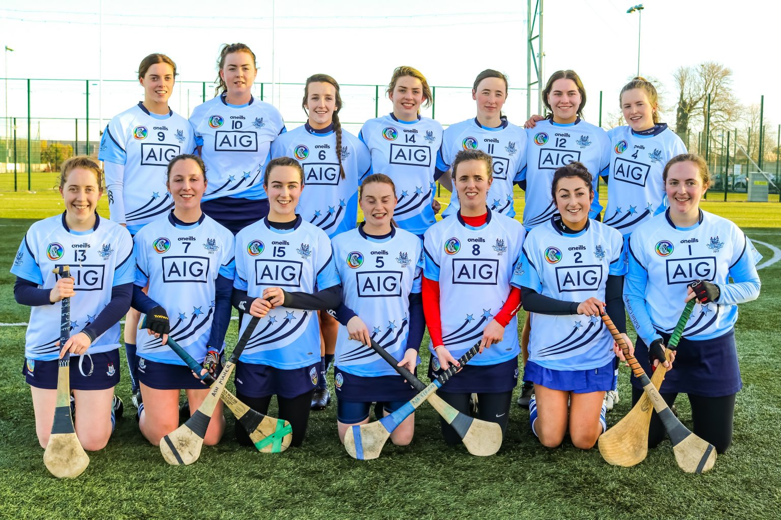 Image Of The 2017 Dubs Stars Camogie Team