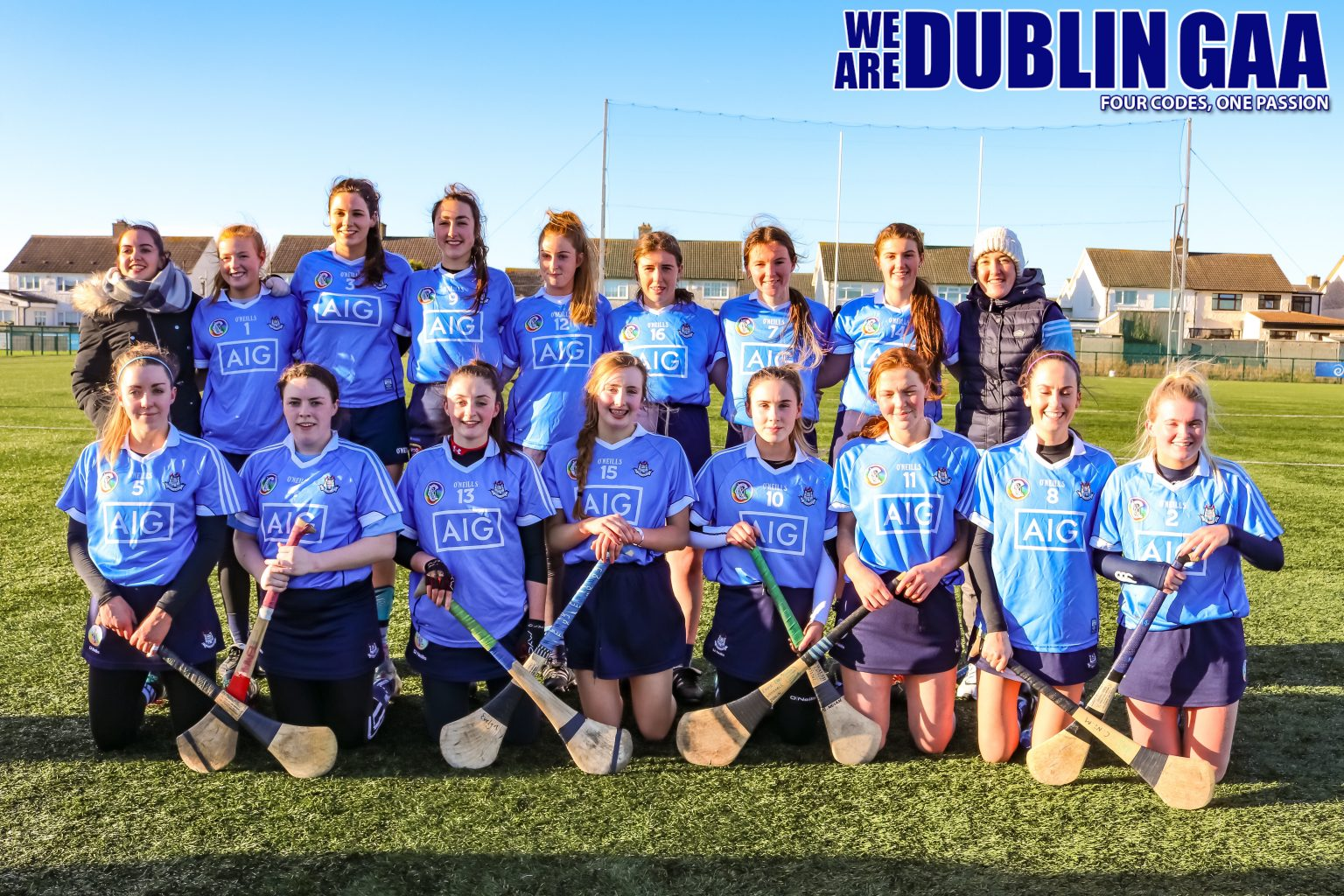 Image Of The Dublin Premier Junior Camogie Team
