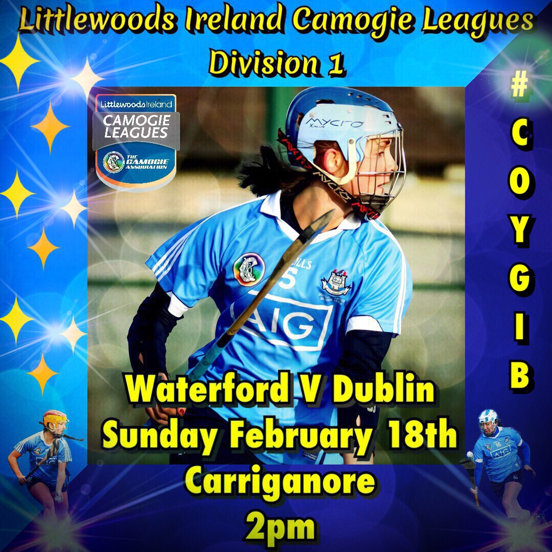 Dublin Senior Camogie Team Named For League Game Against Waterford