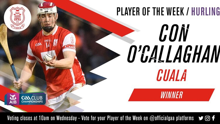 CON O'CALLAGHAN IS NAMED GAA.ie HURLER OF THE WEEK