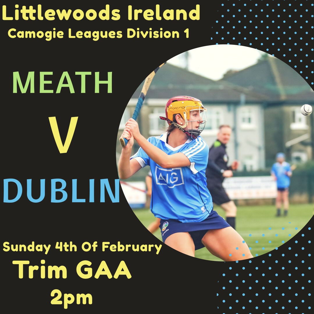 Dublin Senior Camogie Squad Face Meath In Round 3 Of The Littlewoods Ireland National Camogie Leagues