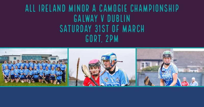 Team News: Win For Dublin Minor Camogie Squad Will Secure Championship Semi Final Place