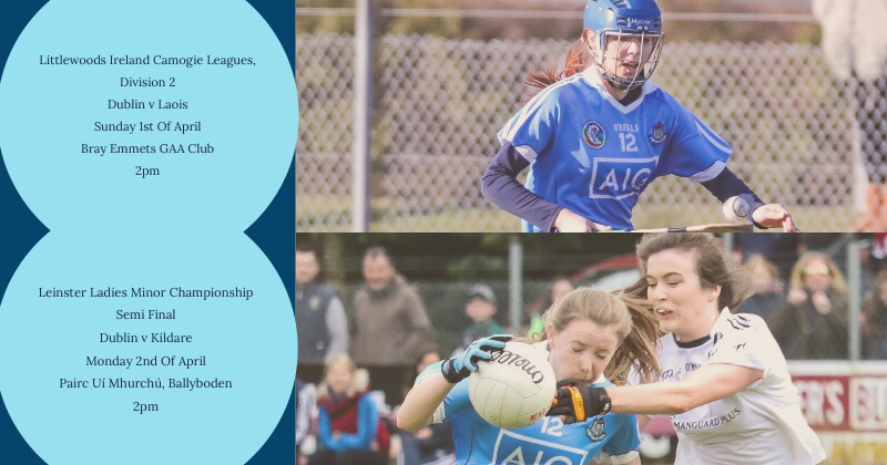 Venue Change For Dublin's Premier Junior Camogie And Minor Ladies Football Games