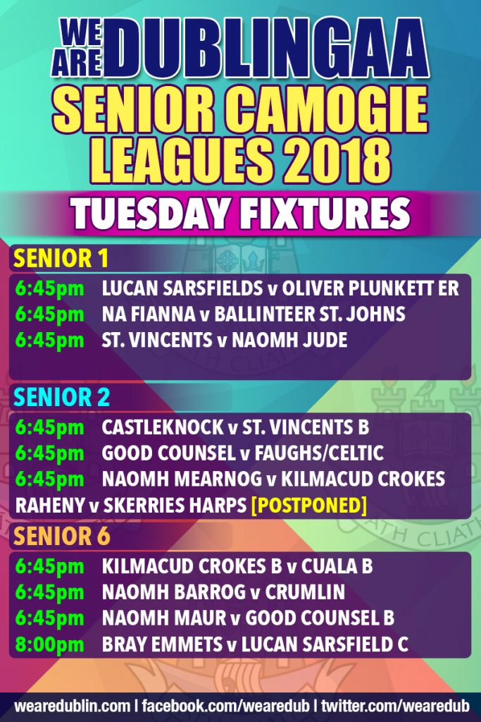 Senior Camogie Leagues 1, 2 and 6