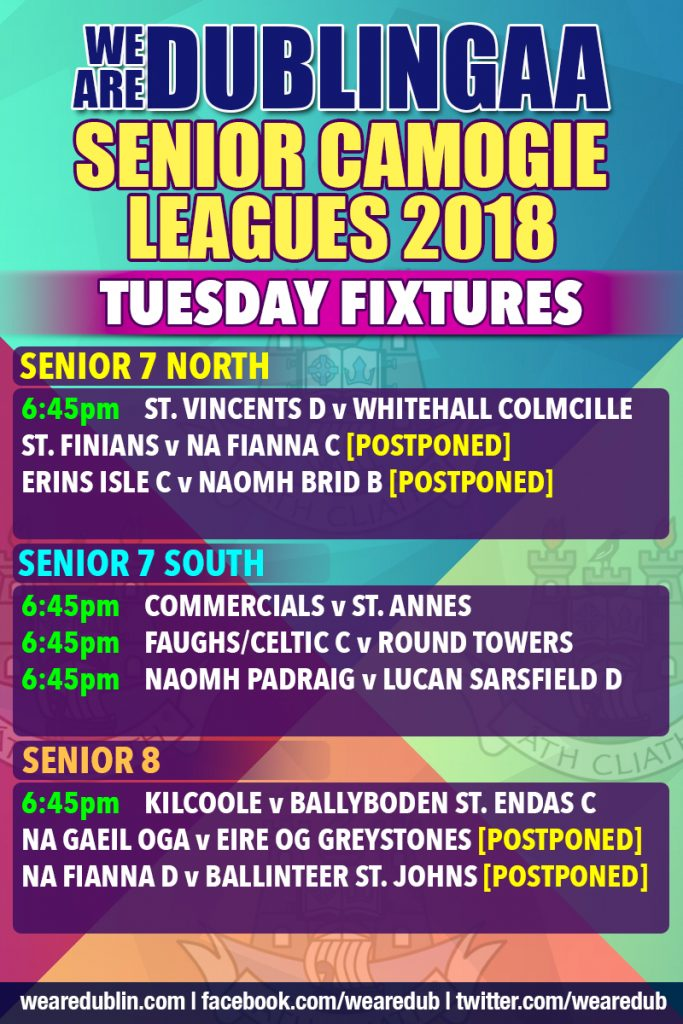 Senior Camogie Leagues