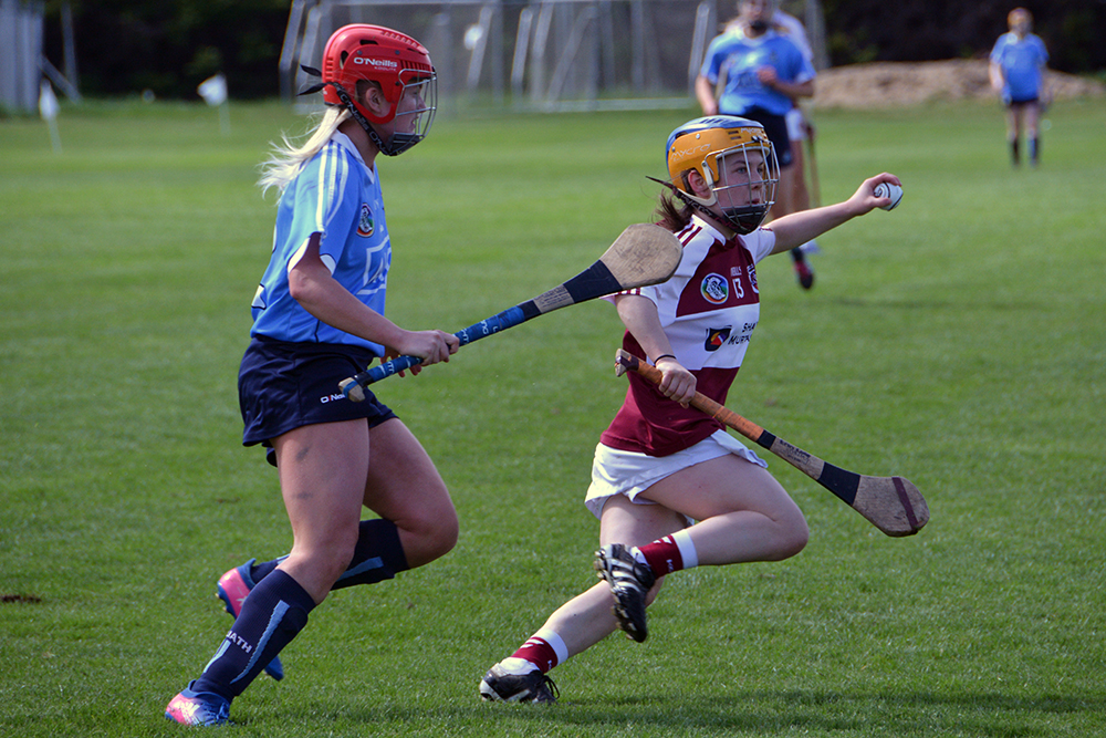 Dublin Premier Junior - Westmeath