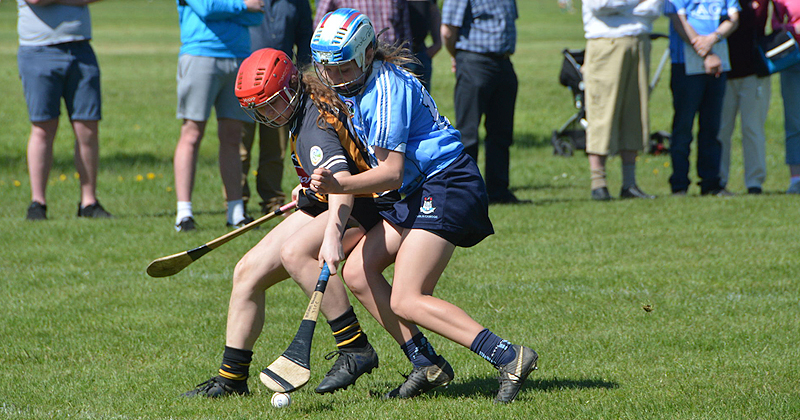 Kilkenny Too Strong For Dublin In Leinster U16A Camogie Championship Final