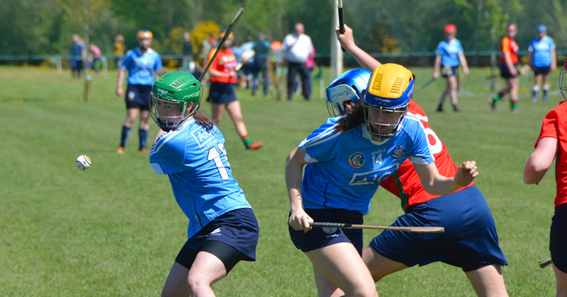 Dublin U16B Camogie Panel - Leinster Championship