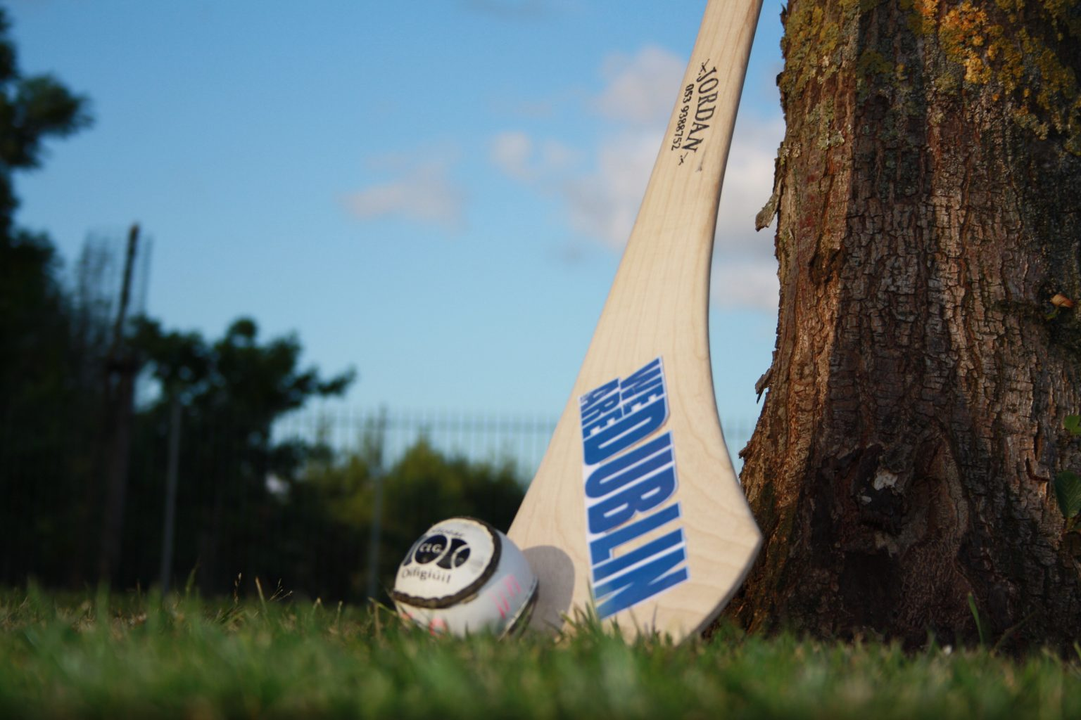 A hurl lies against a tree trunk with a sliotars in front of it to promote the Dublin's U16 Camogie Championship double header against Kilkenny