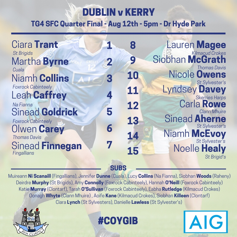 Poster with the names of the Dublin Ladies football team for this Sunday's All Ireland quarter final against Kerry