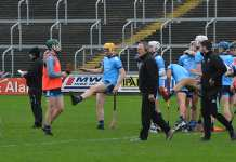 Dublin Senior Hurlers - Allianz National Hurling League
