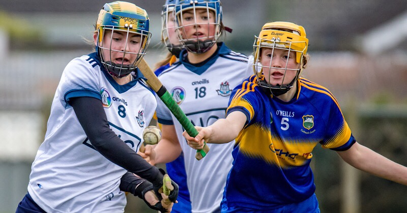 Dublin Camogie Notes: Inter-County, Leinster League Updates