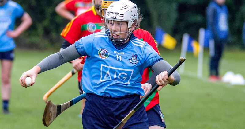 Storming Second Half Secures Division 2 Status For Dublin Intermediates