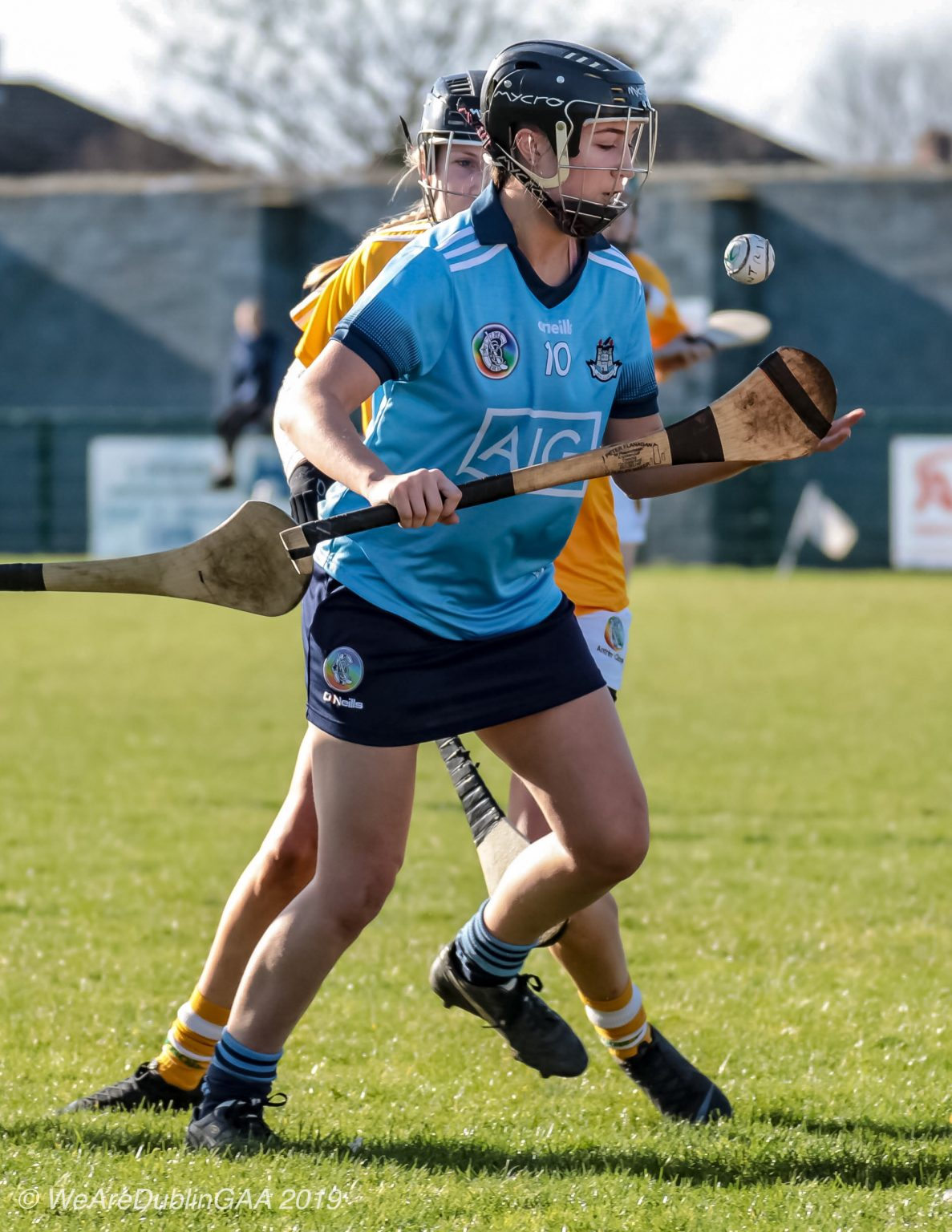 Dublin Intermediate Camogie player in a sky blue jersey, navy skort and black helmet in action against Antrim, the Dublin Intermediates face a relegation play off against Carlow to secure their division 2 status