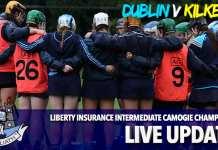 Intermediate Camogie Championship - Dublin v Kilkenny