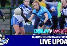 TG4 Leinster Football Final