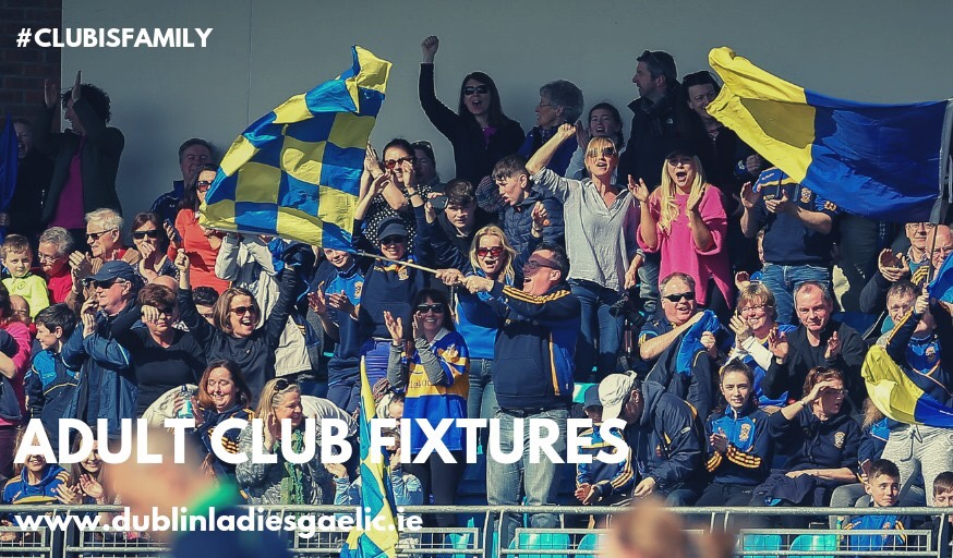 Club supporters in a stand to promote the fixtures in the Dublin LGFA Senior Championship