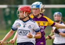 Leinster Minor Camogie