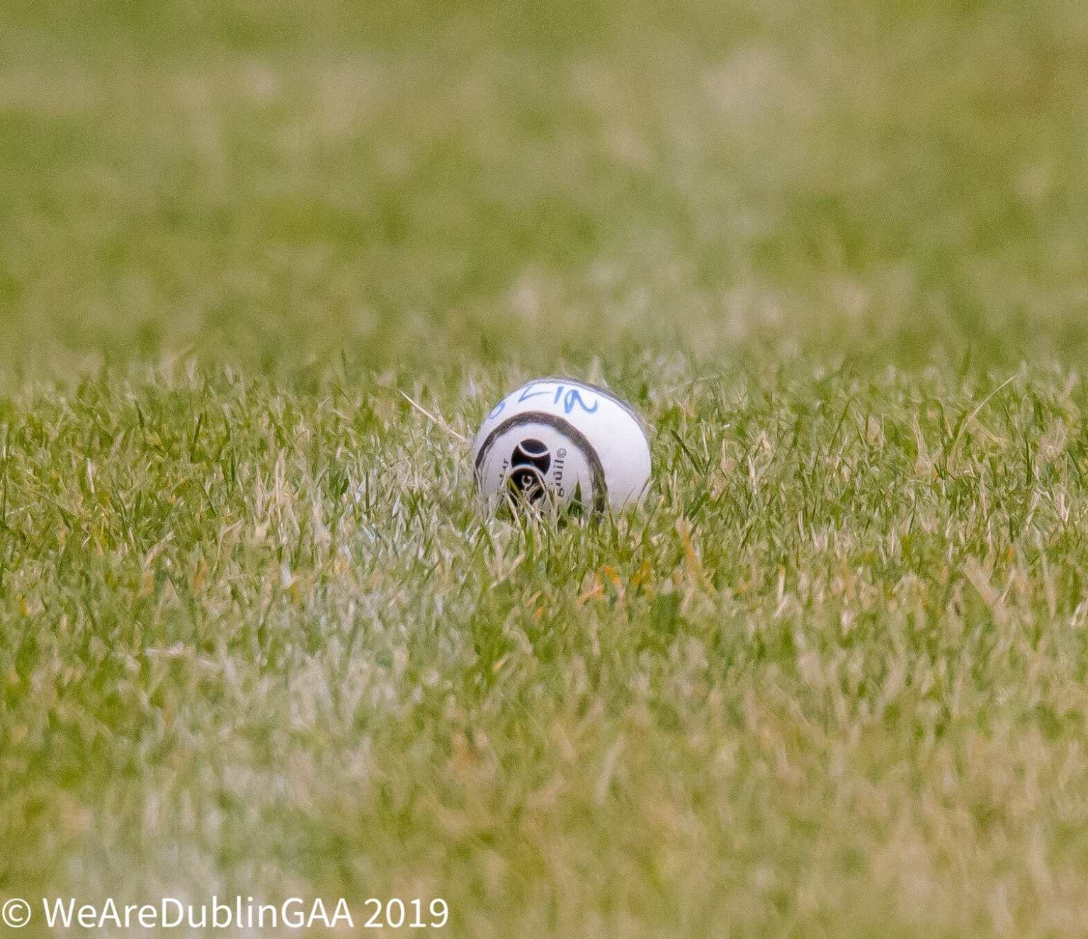 A Sliotar on a grass pitch same as the one used by the Dublin Senior, Intermediate and U16A in the championship games this weekend.