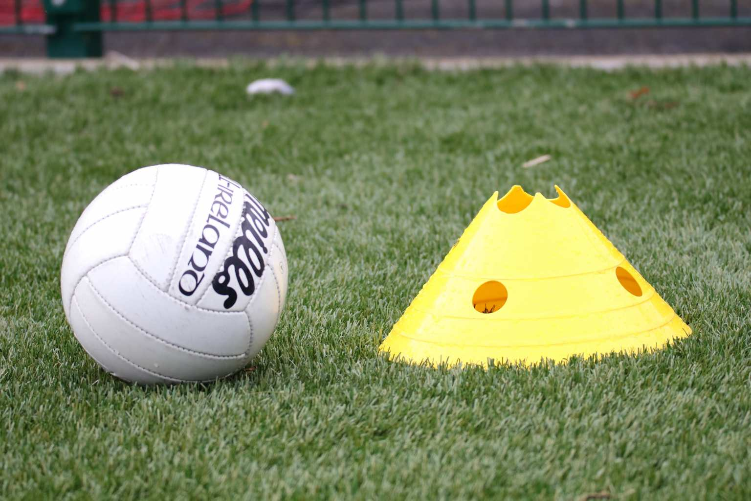 A Gaelic football and come on a pitch to signify the Dublin Ladies Football Club Fixtures.