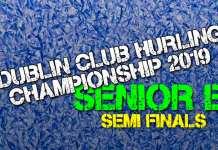 Senior B Hurling Championship