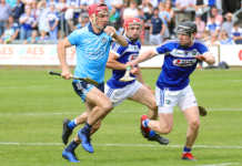 Walsh Cup - Dublin Senior Hurling