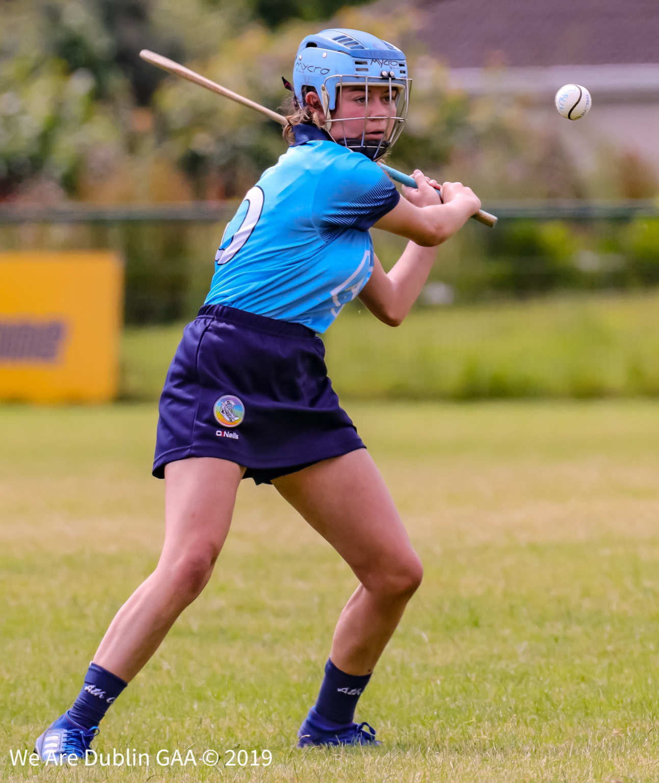 A Dublin Camogie Player About To Strike The Ball, attention turns to club action this week as the Senior 1 Club Championship Final takes place.