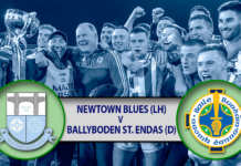 Ballyboden St. Endas - Leinster Senior Football Championship