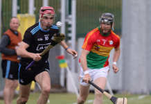 Dublin v Carlow - National Hurling League