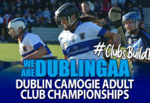 Adult Camogie Championships