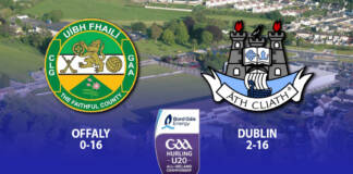 Dublin U20 Hurlers - Leinster Quarter Final