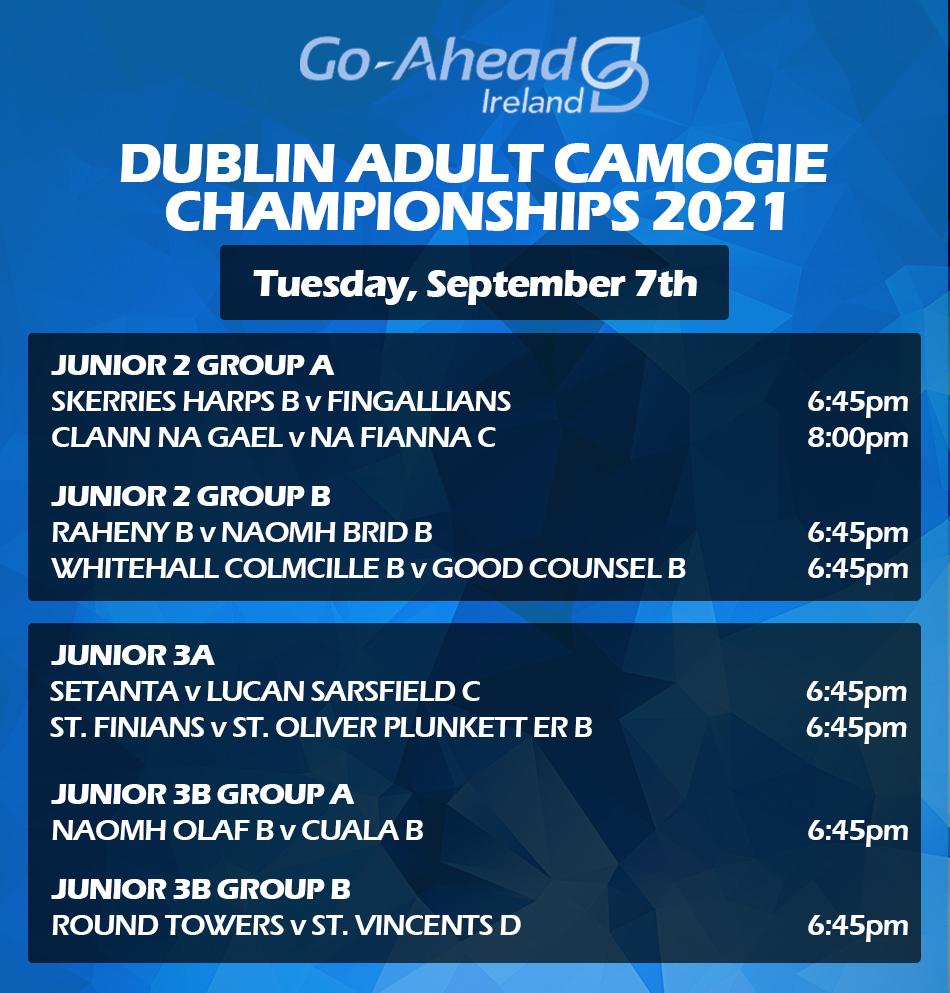 Adult Camogie Championship - Week 3 Fixtures